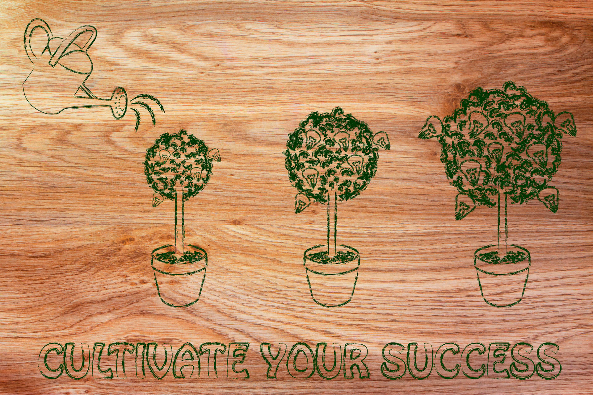 cultivate your success